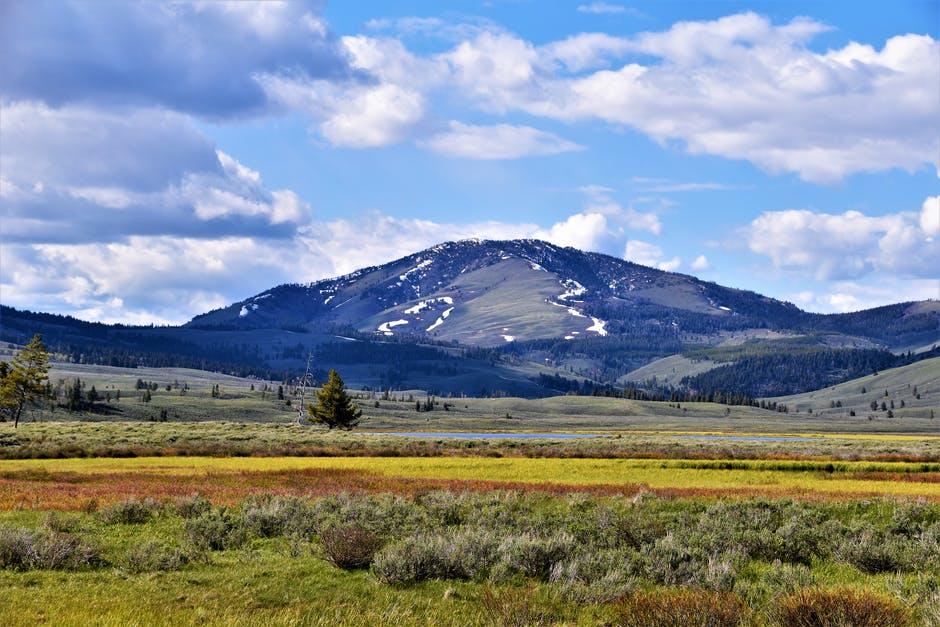 kalispell montana real estate